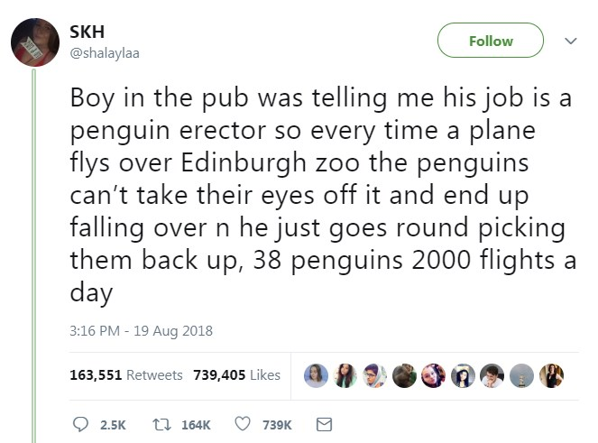 penguin-erector-job-edinburgh-zoo-03