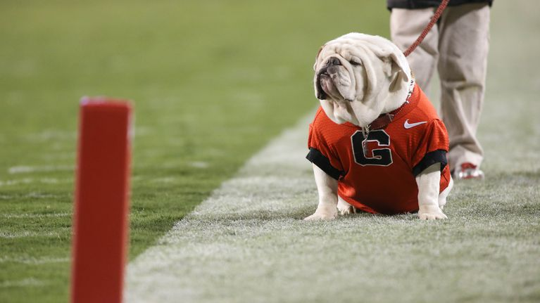 uga-georgia-bulldogs