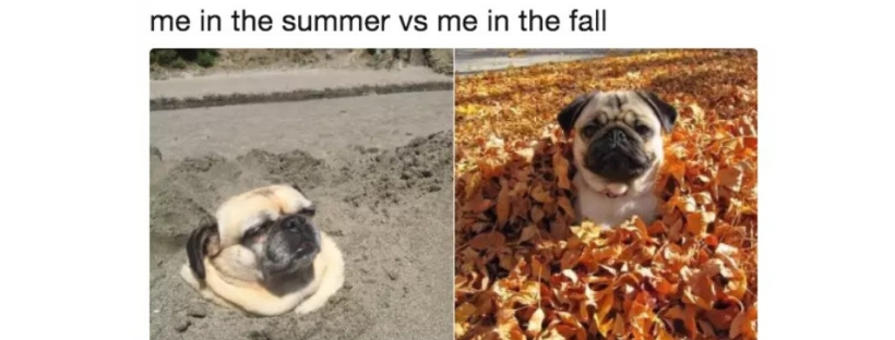 9-august-31-vs-september-1-memes-cover