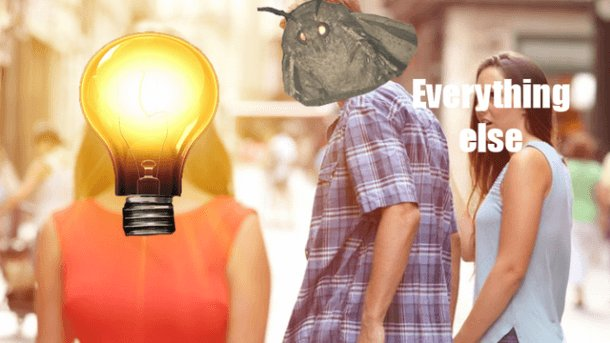 student-trends-wth-is-moth-meme-3