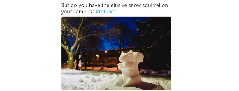 cover-squirrel-on-campus-meme