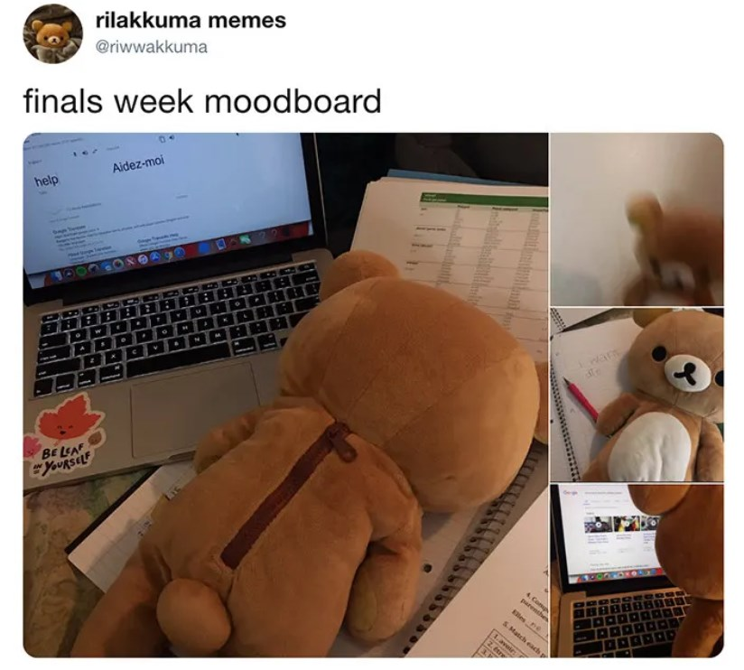 finals-tweets-for-students-15