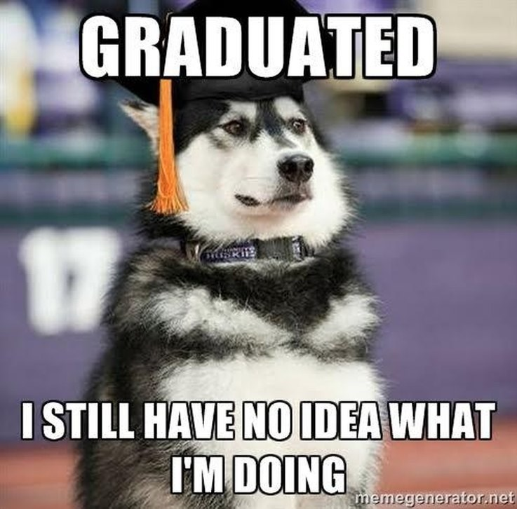 hilarious-animal-college-life-memes-03