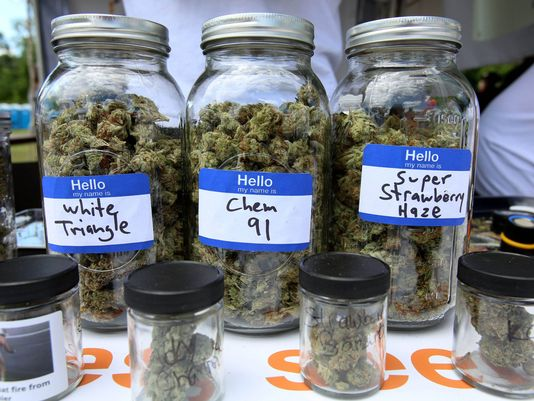 michigan-cannabis-legalization-02