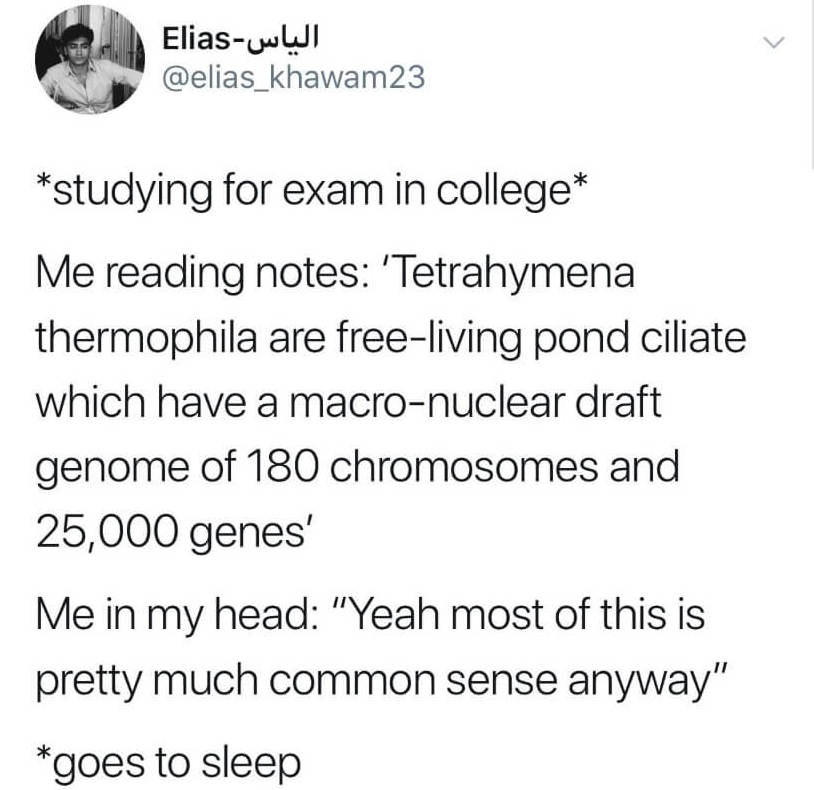 relatable-student-memes-07