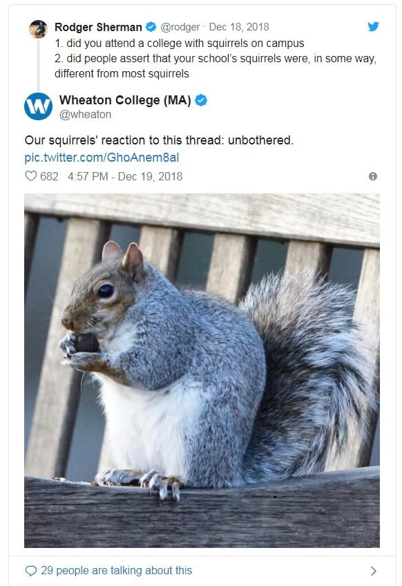 squirrel-on-campus-memes-06