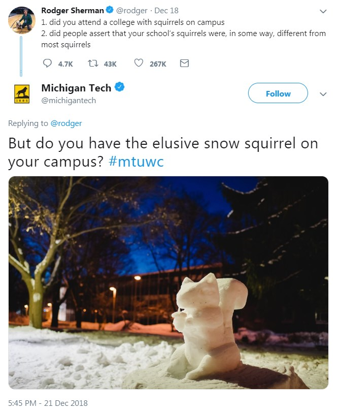 squirrel-on-campus-memes-09