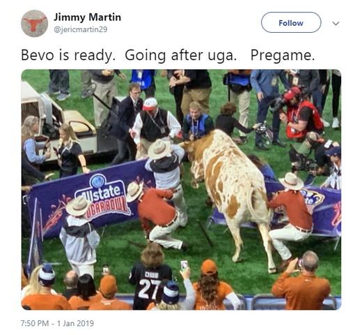 bevo-vs-uga