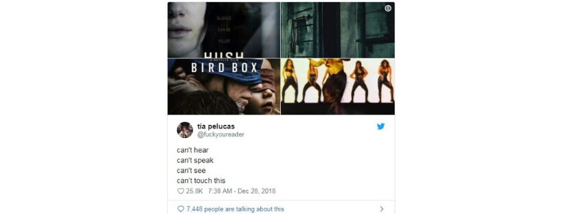 11 Hot Bird Box Memes That Have Blown Up The Twitterverse