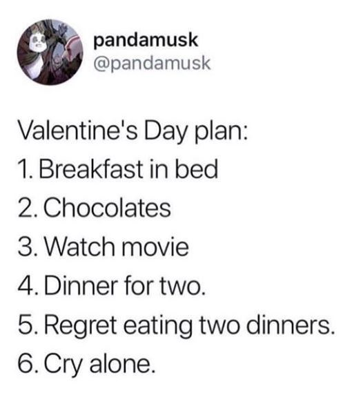 anti-valentines-day-memes-for-singles-11