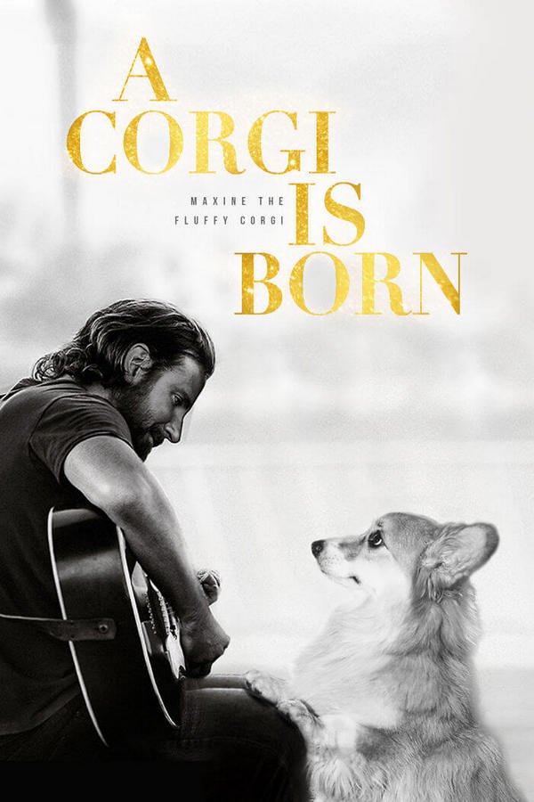corgi-gets-photoshopped-into-movie-posters-01