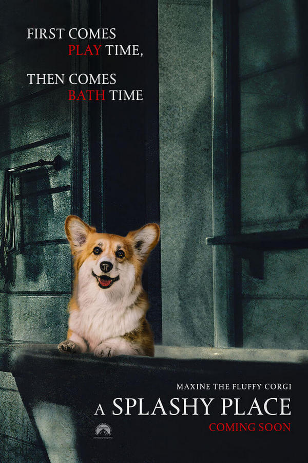 corgi-gets-photoshopped-into-movie-posters-03