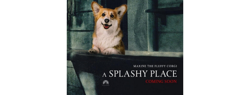 cover-corgi-gets-photoshopped-movie-poster
