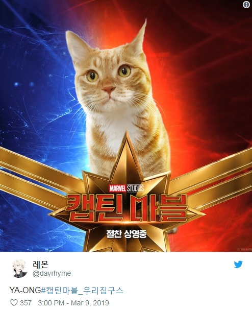 captain-marvels-cat-twitter-trend-1.jpg