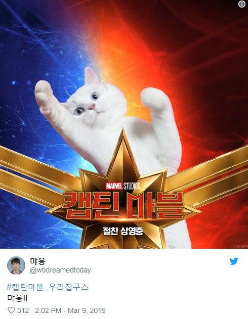 captain-marvels-cat-twitter-trend-2.jpg