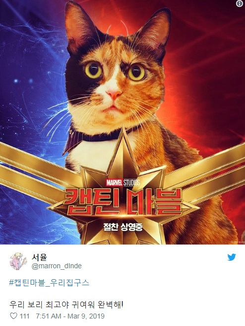 captain-marvels-cat-twitter-trend-3.jpg
