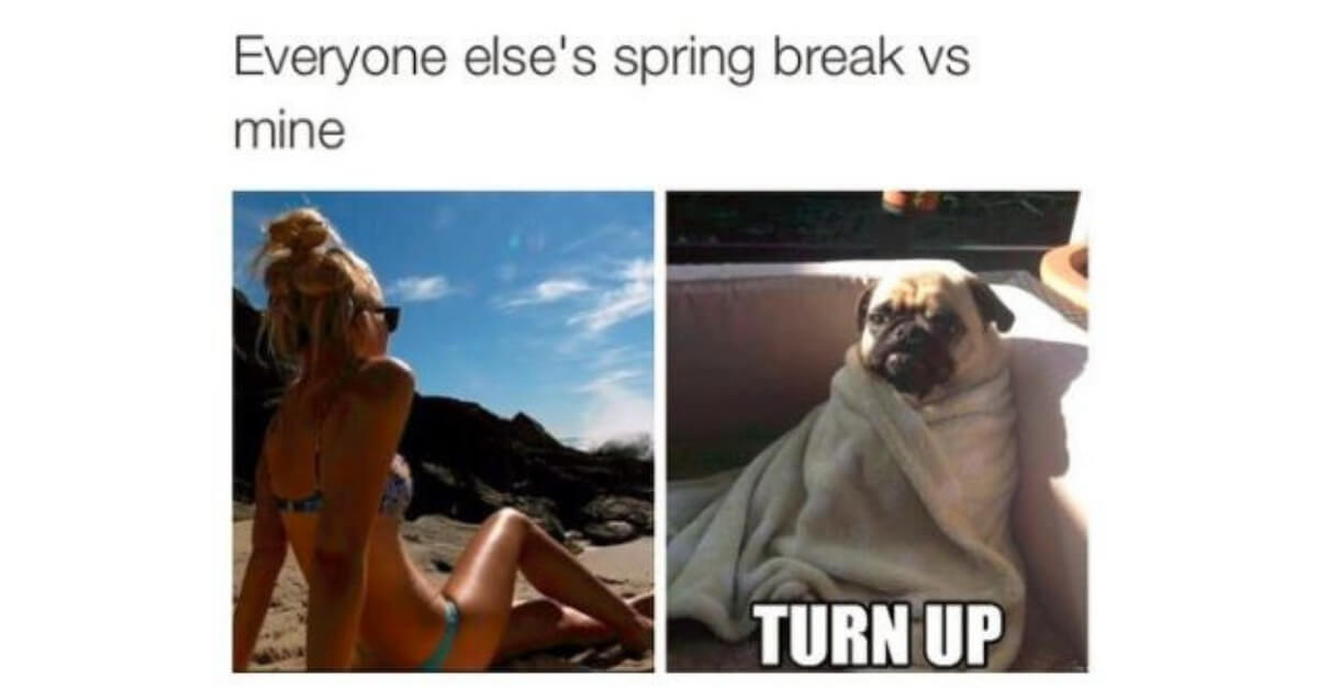 cover-spring-break-vibes