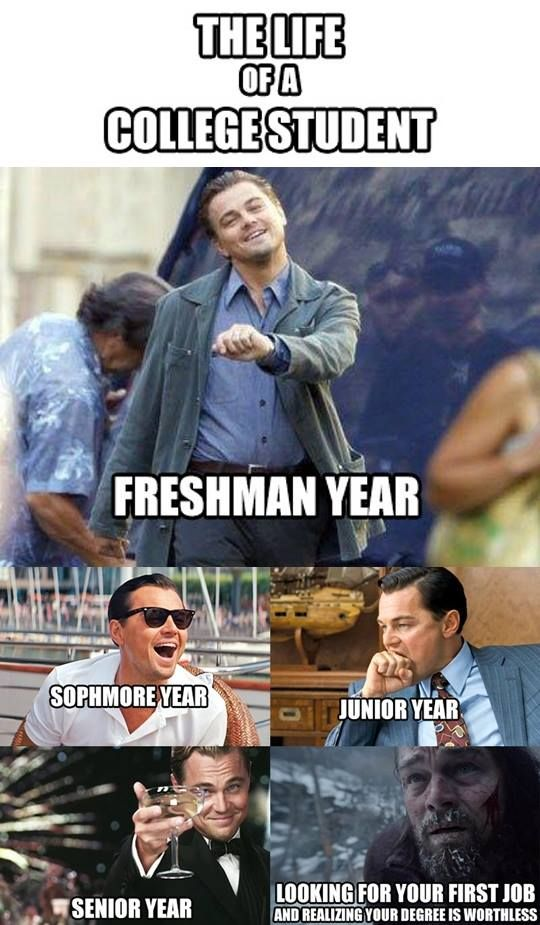 what-it-means-to-be-junior-student-memes-3.jpg