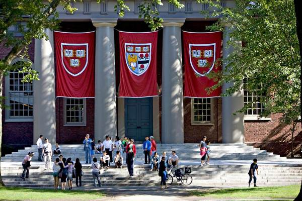 Best Free Online Courses from the Top American Universities