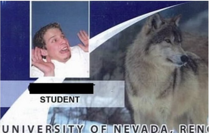 student-id-card-02