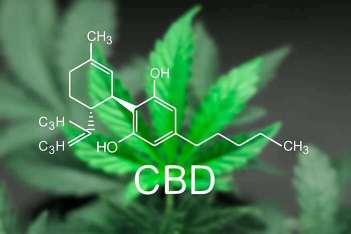 cbdfx-cbd-hemp-capsules-pills