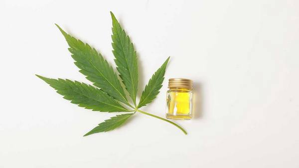 cbd-oil-cannabis-01