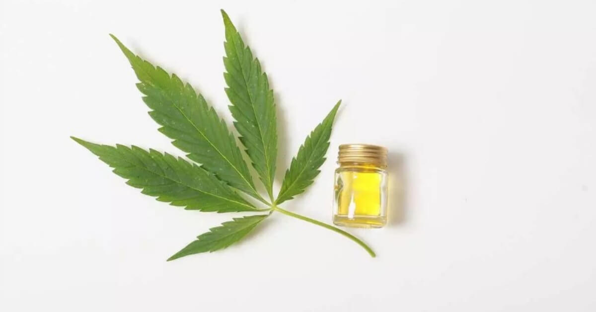 cover-ways-cbd-oil-can-influence-university-college-students