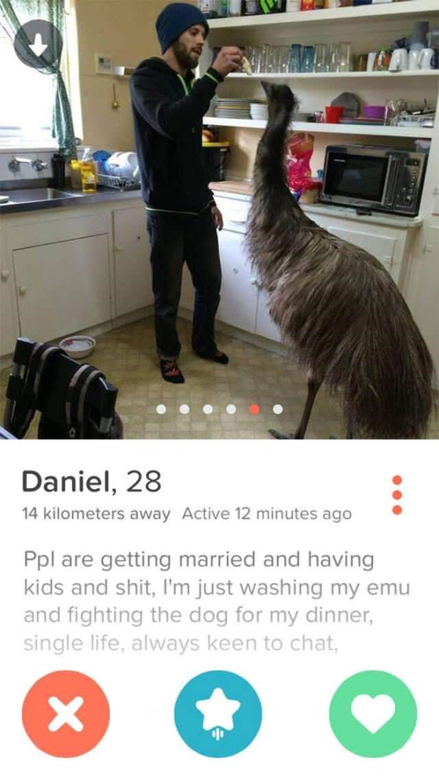 funny-tinder-profiles-24